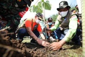 Kepala BNPB Tanam Butun dan Palaka Guna Perkuat Mitigasi Berbasis Vegetasi di Selatan Jawa
